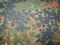 Камуфляжная раскраска Флектарн
